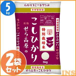 特別栽培米 広島県産 せら高原のこしひかり(5kg×2袋) こしひかり お米 世羅 白米 ひろしま 10キロ 10kg コシヒカリ 清らかな水 豊かな日差し 米どころ ごはん ご飯 ライス 広島産 西日本 オクモ