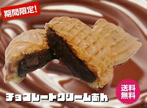 【米粉のたい焼き】 10個入りたい焼き タイ焼き 「チョコレートクリームあん」 和菓子 米粉 お菓子 美味しい 間食 夜食 薄皮 鯛焼き たいやき 子供 おやつ 冷凍 スイーツ 小分け 個包装 お試