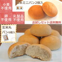 【送料無料】【小麦卵乳製品不使用】おいしい玄米丸パン(6個入)と玄米ミニパン(2個入)のお試しセット【グルテンフ…