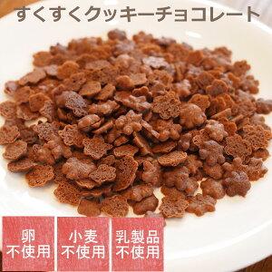 卵不使用、小麦不使用、乳製品不使用お菓子 すくすくクッキーチョコレート 【グルテンフリー】アレルギー対応