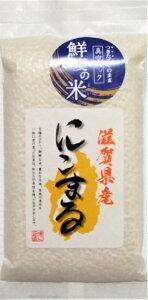 新米! 令和2年産 滋賀県 にこまる 300g 贈答品 プレゼント 新鮮真空パック鮮度の米 おにぎり 2合 美味しい 当店イチオシ!おすすめ 白米 精米