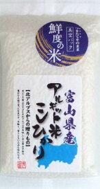 鮮度の米 [令和2年産] 海藻アルギット米 富山県産こしひかり 300g 贈答品 プレゼント 鮮度の米 令和2年産 富山県産 おにぎり 2合 美味しい 当店おすすめ 白米 精米