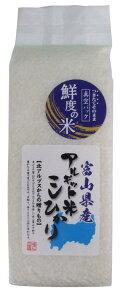海藻アルギット米 こしひかり 米 お試し 900g 贈答品 プレゼント 鮮度の米 令和2年産 富山県産 おにぎり 6合 美味しい 当店おすすめ 白米 精米
