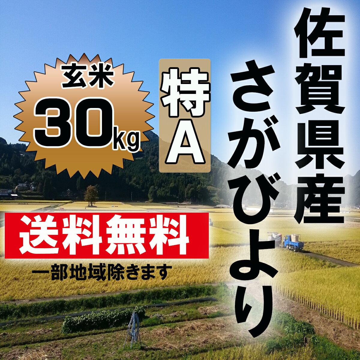 【送料無料】【29年産 新米】7年連続特A 佐賀県産さがびより 玄米30kg【九州産】【米】【お米】