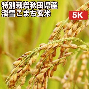 特別栽培秋田県産淡雪こまち玄米5kgお米【選べる搗き方 白米・ハイガ米・玄米・8分つきなど】真空包装米(真空包装代 無料)長期保存・鮮度維持・カビ、害虫などの繁殖 防止に♪