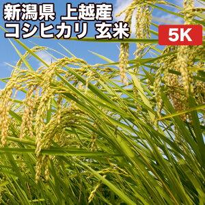 新潟県上越産コシヒカリ玄米5kgお米【選べる搗き方 白米・ハイガ米・玄米・8分つきなど】完全真空包装米(真空包装代 無料)長期保存・鮮度維持・カビ、害虫などの繁殖 防止に♪美味し