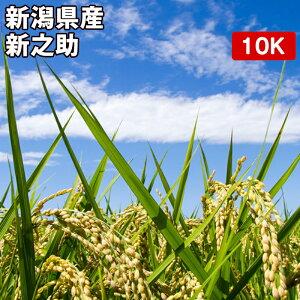 新潟県産 新之助 10kgお米【選べる搗き方 白米・ハイガ米・玄米・8分つきなど】完全真空包装米(真空包装代 無料)長期保存・鮮度維持・カビ、害虫などの繁殖 防止に♪ 贈り物にも。