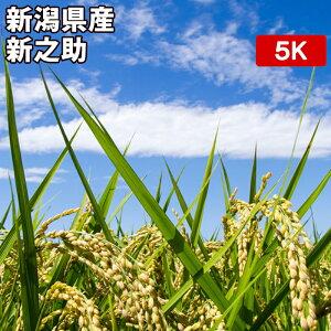 新潟県産 新之助 5kgお米【選べる搗き方 白米・ハイガ米・玄米・8分つきなど】完全真空包装米(真空包装代 無料)長期保存・鮮度維持・カビ、害虫などの繁殖 防止に♪ 美味しいご飯。贈り