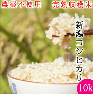 無農薬 米 完熟収穫米 送料無料 特別栽培米 令和2年産 新潟県産 コシヒカリ 10kg(5kgx2個) 安心 安全【お歳暮】【お中元】敬老の日 有機肥料 栽培期間中農薬不使用 玄米 〜 白米 分つき精米