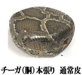 三線 チーガ 胴 本張り 本蛇皮一枚張り 大特価 激安