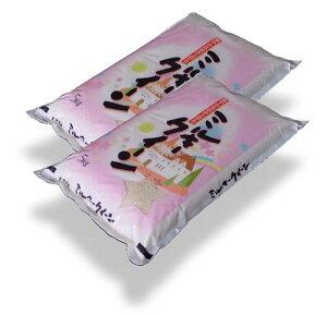 福島県産ミルキークィーン10kg(5kg×2袋)【あす楽対応】