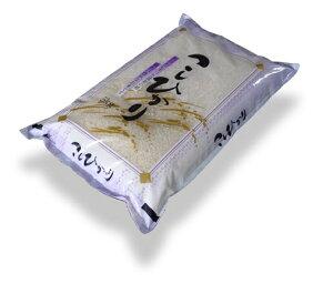 令和2年産『無洗米』会津コシヒカリ5kg【あす楽対応】【あす楽対応】