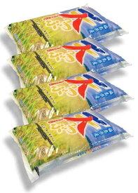 福島県産天のつぶ20kg(5kg×4袋)令和2年産
