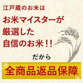 令和元年産こしひかり新潟県産精米10kg(5kg×2)令和元年産本州お届け送料無料おこめお米備蓄用買い置き