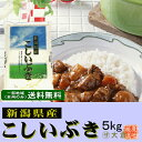 新潟県産こしいぶき(平成28年産)5kg【送料無料(本州のみ)】