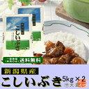 新潟県産こしいぶき(平成28年産)10kg【送料無料(本州のみ)】