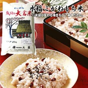(もち米)新潟県産こがねもち(令和2年産)1kg【量り売り】