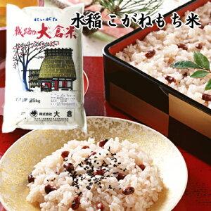 (もち米)新潟県産こがねもち(令和元年産)5kg【送料無料】