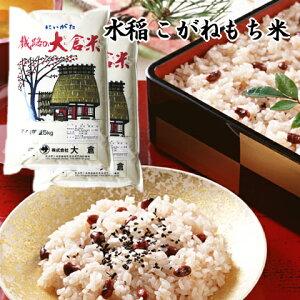 (もち米)新潟県産こがねもち(令和元年産)10kg【送料無料】