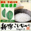 《新米 29年》新潟県産コシヒカリ(平成29年産)10kg【送料無料(本州のみ)】