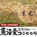 中魚沼産コシヒカリ(平成28年産)(十日町地区限定) 玄米 10kg(5kg×2)【送料無料(本州のみ)】