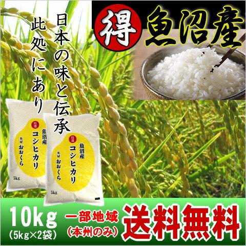 (特選)魚沼産コシヒカリ(平成29年産)10kg【送料無料(本州のみ)】