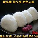 米 【送料無料】 金色の風 2kg 白米 玄米 分づき米も可 令和元年産 岩手県産 新品種 発送日当日精米 12個まで