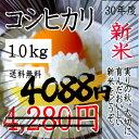 ↓値下げ↓新米!30年産 千葉県産コシヒカリ10kg 【送料無料】一部地域を除きます。10kg×1袋の商品です。あす楽 中…