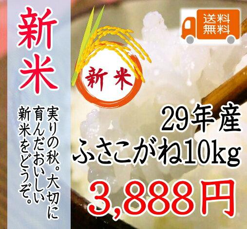 新米!29年産千葉県産ふさこがね 10kg 太陽の恵たっぷりつやつや!!【新米 送料無料】【新米10kg送料無料】一部地域を除きます。10kg、1袋の商品です。【米 10kg 送料無料】玄米 10kg 送料無料 玄米 あす楽