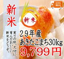 新米!29年 千葉県産あきたこまち30kg 白米 【 精米27キロの商品のみとなります。】【送料無料】一部地域を除く。…