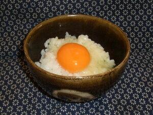 育ち盛りのお子様に食べていただきたい26年産のお米★★お米10キロ送料無料★★富山県産アルギットこしひかり玄米10kg