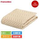 フランスベッド バイオベッドパッド クイーン 170cm×195cm | 正規品 ベッドパッド クイーン 敷きパッド 安い パッド ポリエステル 洗…
