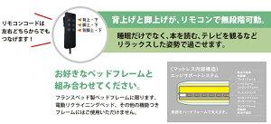 【セール期間限定クーポン発行中】フランスベッドRP-1000DLX電動シングルマットレス97cm×195cm×21cm