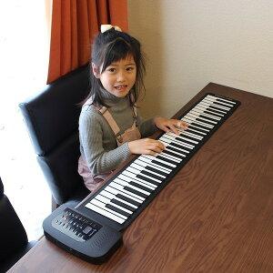 楽器玩具 ピアノ・キーボード ロールアップピアノ61鍵盤FL-1735 ピアノ ロールアップ 便利 持ち運び 電子ピアノ 子ども 手軽 プレゼント 61鍵盤