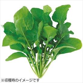 水耕栽培器 Green Farm グリーンファーム 水耕栽培種子 ルッコラ 5袋セット ユーイング UH-BC02-5SET