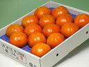 石川県かほく市特産『紋平柿/もんべいがき』2L 14玉化粧箱入