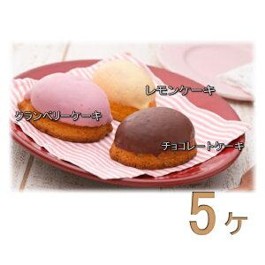 レモンケーキ 5個 ケーキ スイーツ 焼き菓子 お菓子 選べる プレゼント ギフト お祝い 内祝 お返し お礼 手土産 お土産 詰合せ 自宅用
