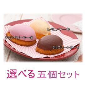 選べるレモンケーキ5個入り / レモン ・ クランベリー ・ チョコレート
