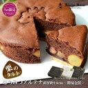 ケーニヒスクローネ お菓子 ギフト ネット限定 はちみつアルテナ(チョコ) AC−5 5号 チョコ 抹茶 チョコ&抹茶 栗入…