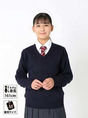 スクールセーター【arCONOMi男女兼用ウールアクリル制服セーター(全4色)】高校生学生中学ニット毛