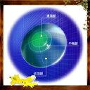 【20ポイント付】HOYA マルチビューEXライト (遠近両用) 【ハードタイプ】