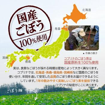 国産ごぼう100%使用安定な品質飲みやすく美味しいごぼう畑