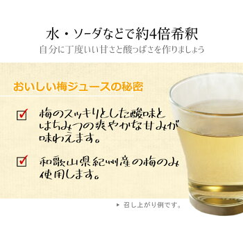 紀州産梅ハニップ梅ジュース希釈用梅シロップノンアルコールはちみつ甘さ控えめ手作り風