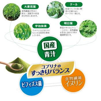 すっきりビフィズス菌青汁粉末タイプ乳酸菌大麦若葉ケール明日葉イヌリン善玉菌βカロテン