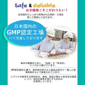 日本国内GMP認定工場生産