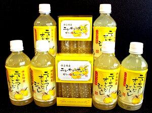 【産直商品】ニューサマーオレンジ ジュレ&シャーベット詰め合わせ