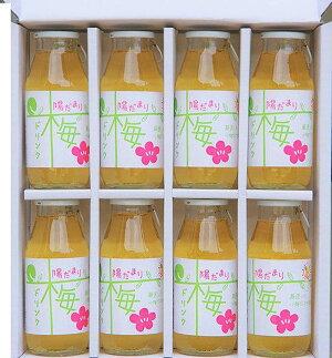 【がんばろう!静岡対象商品】三ヶ日産「梅」ドリンク180ml×8本セット30%うめ果汁入り飲料