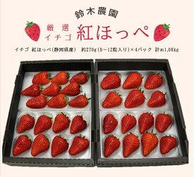 【産直商品】「紅ほっぺ」いちご約270g×4P 計1.1kg(要冷蔵)(1パック6〜11粒入り)