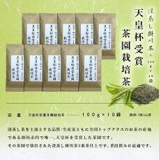天皇杯受賞茶園栽培茶100g×10袋(深蒸し掛川茶※1・新茶受付)山英