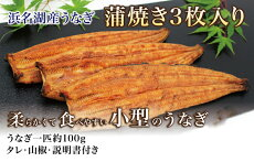 浜名湖産うなぎ長蒲焼き3枚入り『柔らかくて食べやすい小型のうなぎ』【送料無料】